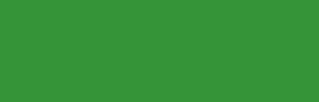 greenville-sc-capital-asset-management